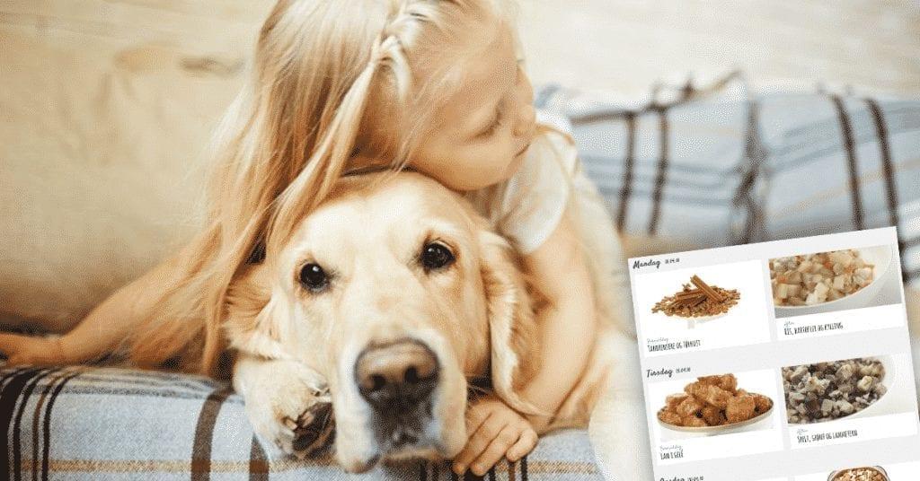 Kommer snart: Madplaner til hunde!